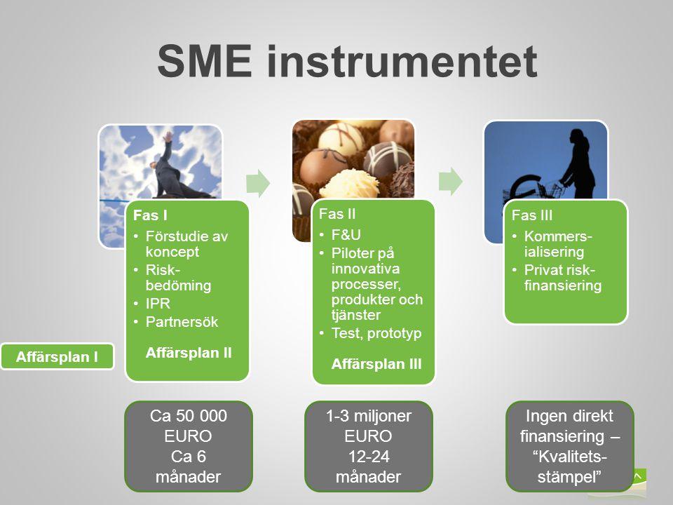 Bild 15 Fas I Förstudie av koncept Risk- bedöming IPR Partnersök Affärsplan II Fas II F&U Piloter på innovativa processer, produkter och tjänster Test, prototyp Affärsplan III Fas III Kommers- ialisering Privat risk- finansiering Affärsplan I SME instrumentet Ca 50 000 EURO Ca 6 månader 1-3 miljoner EURO 12-24 månader Ingen direkt finansiering – Kvalitets- stämpel