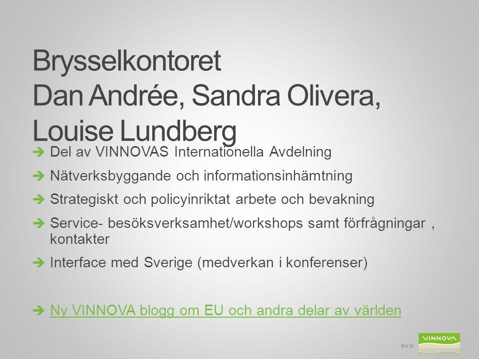 Brysselkontoret Dan Andrée, Sandra Olivera, Louise Lundberg  Del av VINNOVAS Internationella Avdelning  Nätverksbyggande och informationsinhämtning  Strategiskt och policyinriktat arbete och bevakning  Service- besöksverksamhet/workshops samt förfrågningar, kontakter  Interface med Sverige (medverkan i konferenser)  Ny VINNOVA blogg om EU och andra delar av världen Ny VINNOVA blogg om EU och andra delar av världen Bild 29