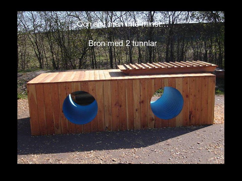 Och sist men inte minst… Bron med 2 tunnlar