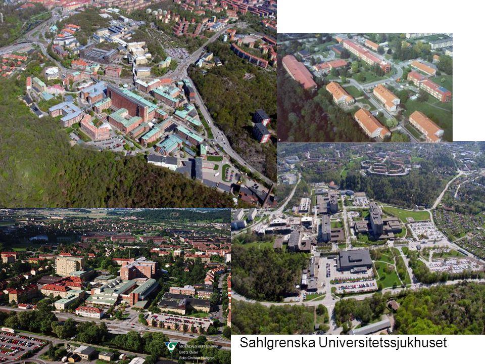 2009.05.13/L.Ring Lokalförsörjningssplaner Sahlgrenska sjukhuset
