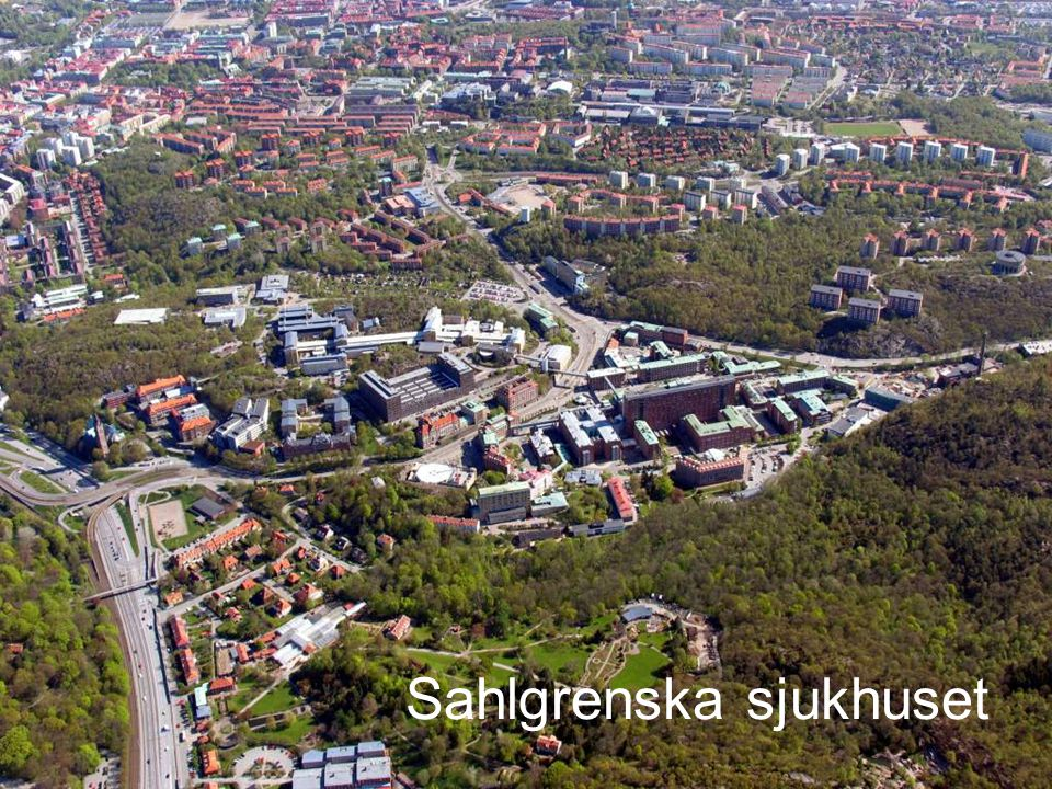 2009.05.13/L.Ring MR 2 Den första idéen Att skapa ett projekt kring detta strategiska fastighetsproblem Sjukhusledningen var tveksam.