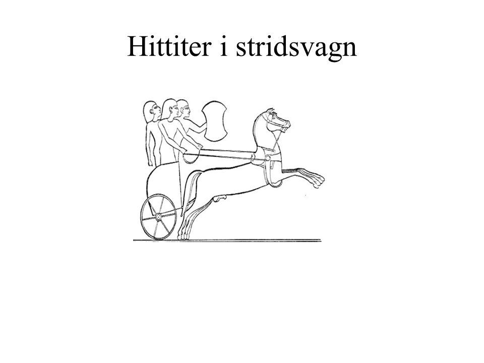 Hittiter i stridsvagn