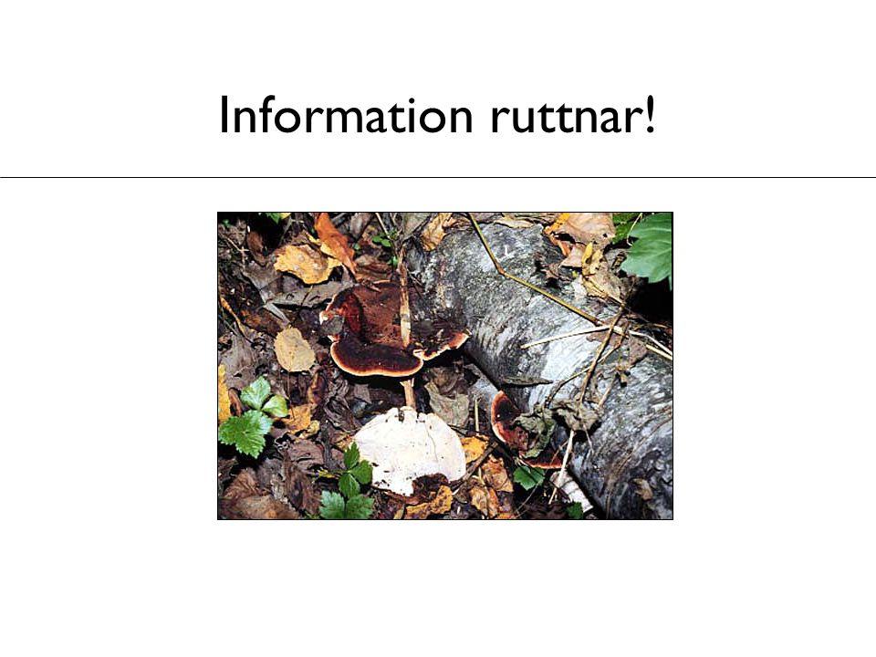 Information ruttnar!