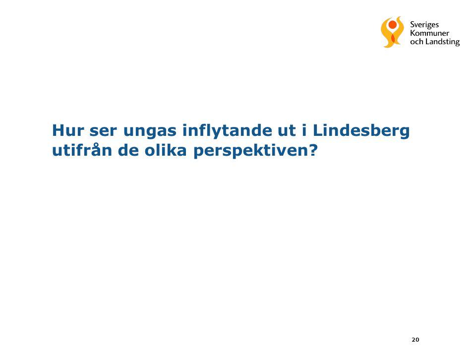 Hur ser ungas inflytande ut i Lindesberg utifrån de olika perspektiven? 20
