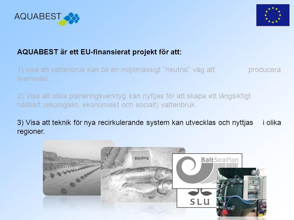 Fas 5 Sammanställning av projektet samt analys av framgångs och bakslagsfaktorer +/-