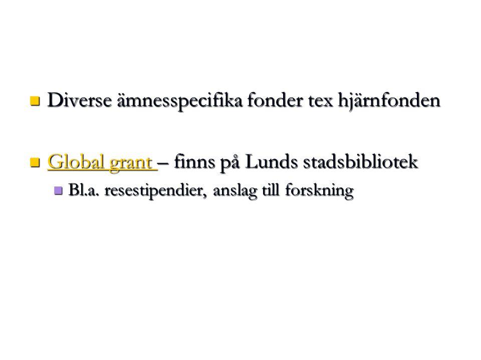 Diverse ämnesspecifika fonder tex hjärnfonden Diverse ämnesspecifika fonder tex hjärnfonden Global grant – finns på Lunds stadsbibliotek Global grant – finns på Lunds stadsbibliotek Global grant Global grant Bl.a.