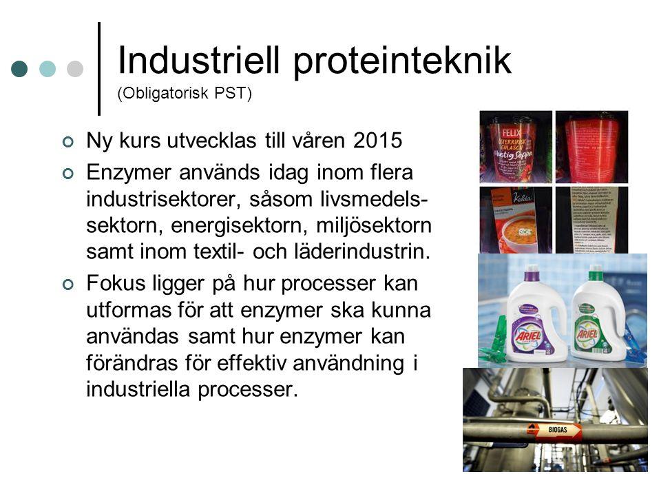 Industriell proteinteknik (Obligatorisk PST) Ny kurs utvecklas till våren 2015 Enzymer används idag inom flera industrisektorer, såsom livsmedels- sektorn, energisektorn, miljösektorn samt inom textil- och läderindustrin.