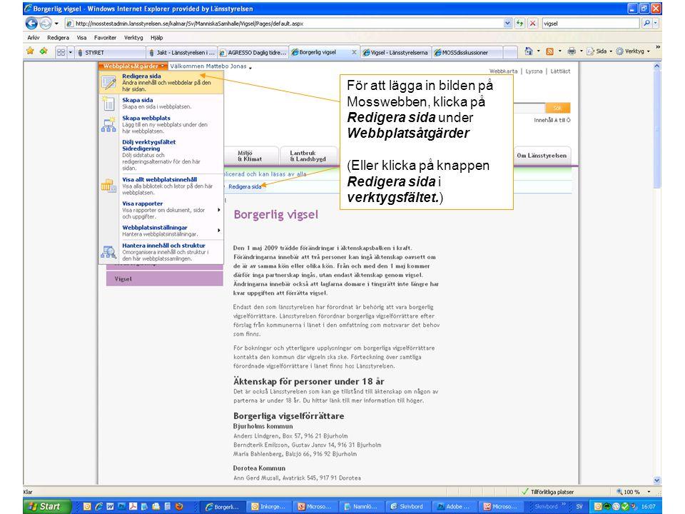 För att lägga in bilden på Mosswebben, klicka på Redigera sida under Webbplatsåtgärder (Eller klicka på knappen Redigera sida i verktygsfältet.)