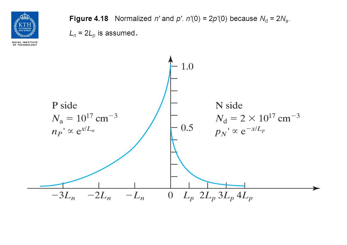 Figure 4.18 Normalized n' and p'. n'(0) = 2p'(0) because N d = 2N a. L n = 2L p is assumed.