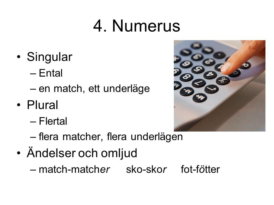 4. Numerus Singular –E–Ental –e–en match, ett underläge Plural –F–Flertal –f–flera matcher, flera underlägen Ändelser och omljud –m–match-matchersko-s