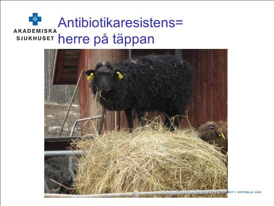 Handlingsplan multiresistenta bakterier Mål –Förhindra smittspridning inom sjukhuset –Förhindra vårdrelaterade infektioner –Reflekterad antibiotikaanvändning Framåt