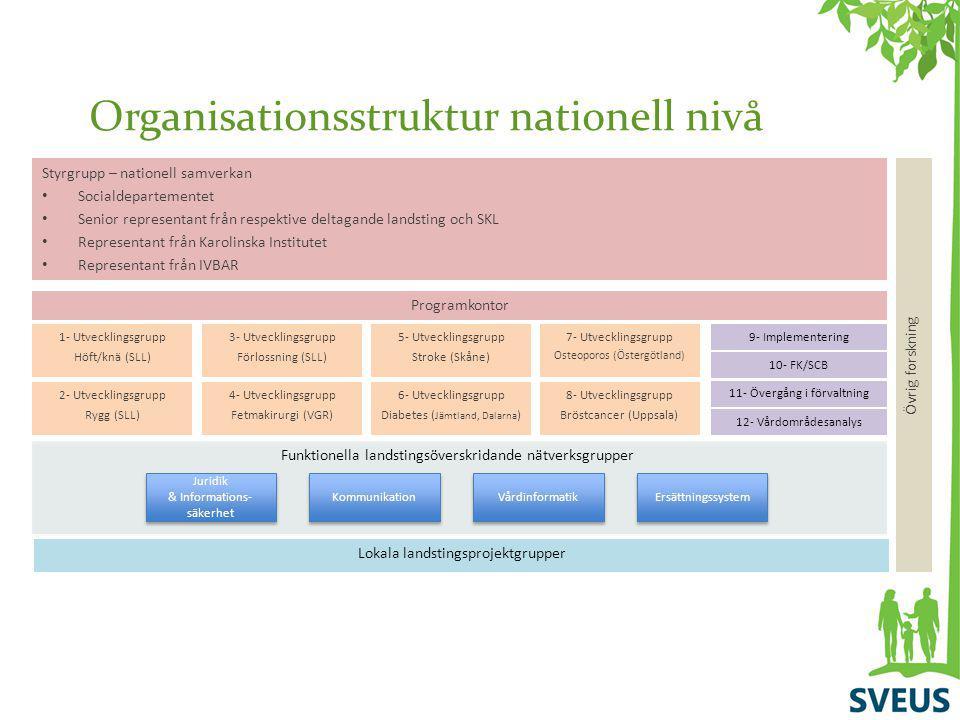 Organisationsstruktur nationell nivå Lokala landstingsprojektgrupper 1- Utvecklingsgrupp Höft/knä (SLL) Styrgrupp – nationell samverkan Socialdepartem
