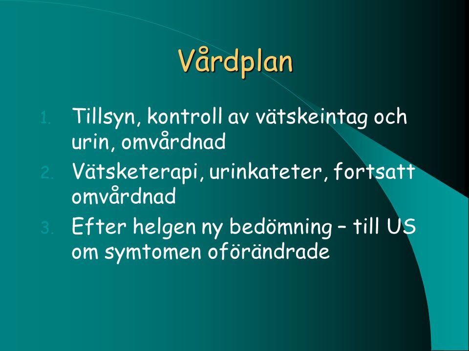 Vårdplan 1. Tillsyn, kontroll av vätskeintag och urin, omvårdnad 2. Vätsketerapi, urinkateter, fortsatt omvårdnad 3. Efter helgen ny bedömning – till