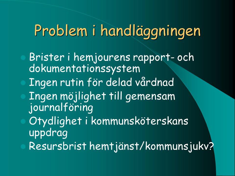 Problem i handläggningen Brister i hemjourens rapport- och dokumentationssystem Ingen rutin för delad vårdnad Ingen möjlighet till gemensam journalför