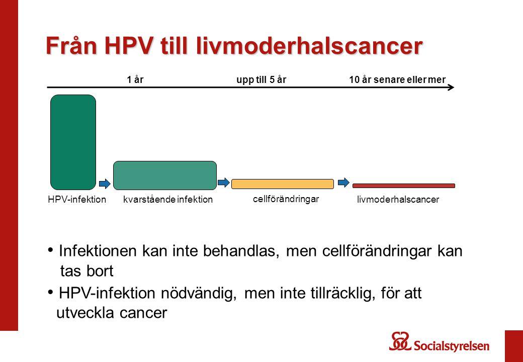 Från HPV till livmoderhalscancer 1 årupp till 5 år10 år senare eller mer HPV-infektion cellförändringar kvarstående infektionlivmoderhalscancer Infekt