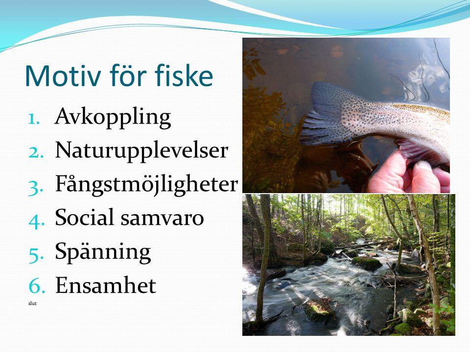 Motiv för fiske 1. Avkoppling 2. Naturupplevelser 3. Fångstmöjligheter 4. Social samvaro 5. Spänning 6. Ensamhet slut