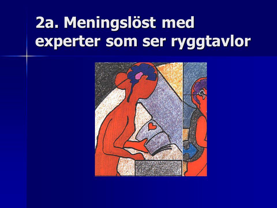2a. Meningslöst med experter som ser ryggtavlor