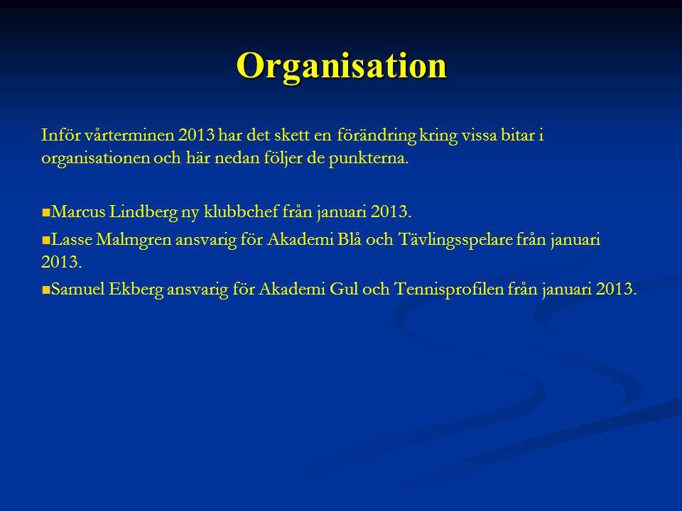 Organisation Inför vårterminen 2013 har det skett en förändring kring vissa bitar i organisationen och här nedan följer de punkterna.