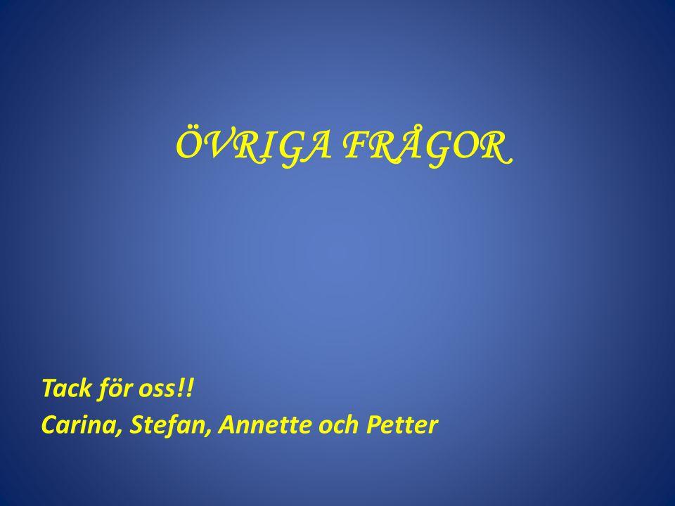 ÖVRIGA FRÅGOR Tack för oss!! Carina, Stefan, Annette och Petter