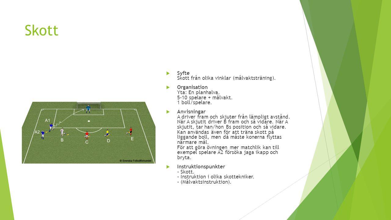 Skott  Syfte Skott från olika vinklar (målvaktsträning).  Organisation Yta: En planhalva. 5-10 spelare + målvakt. 1 boll/spelare.  Anvisningar A dr