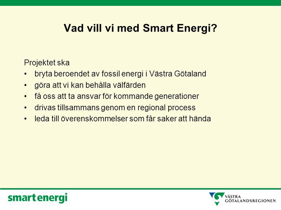 Smart Energi processen 1.Effektiv energianvändning i bostäder och lokaler 2.Effektiva godstransporter - grön logistik 3.Effektiva persontransporter 4.Förnybara drivmedel 5.Ökad produktion av energi från skog, åker, sol och vind 6.Energieffektiv konsumtion och produktion av varor och tjänster Utmaningar & åtgärder Mål & strategier Överenskommelser Uppföljning & Utvärdering