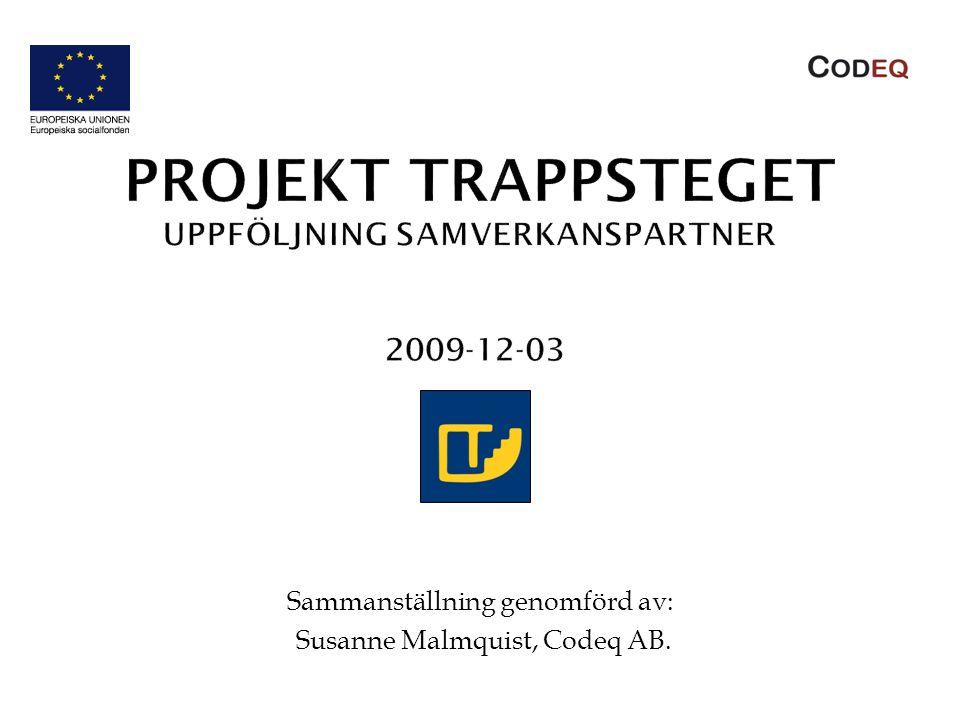 Sammanställning genomförd av: Susanne Malmquist, Codeq AB.