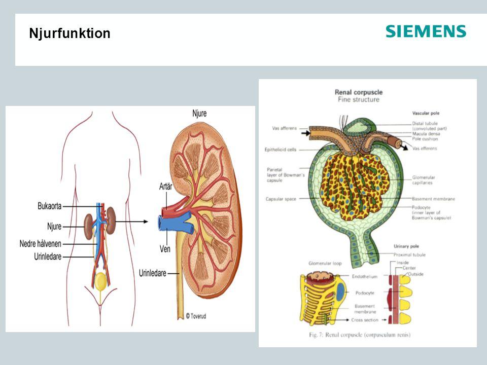Underhåll av Clinitek Status Torka torrt efter varje urinprov Daglig Rengöring av insats till släden.