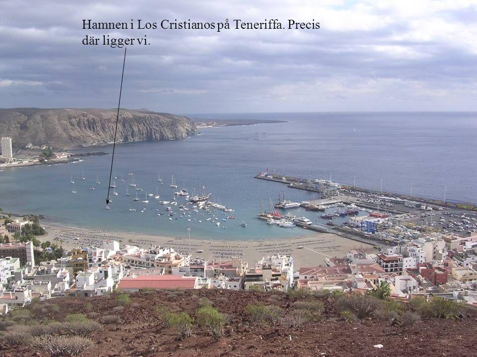 Hamnen i Los Cristianos på Teneriffa. Precis där ligger vi.