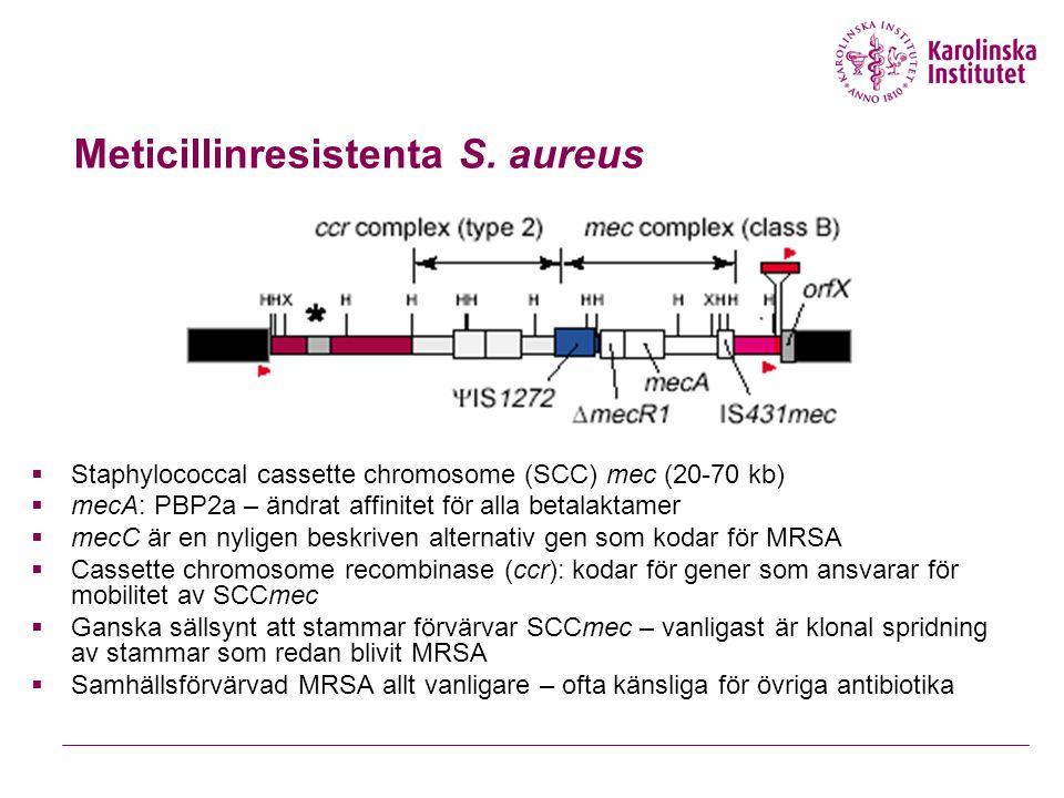  Staphylococcal cassette chromosome (SCC) mec (20-70 kb)  mecA: PBP2a – ändrat affinitet för alla betalaktamer  mecC är en nyligen beskriven alternativ gen som kodar för MRSA  Cassette chromosome recombinase (ccr): kodar för gener som ansvarar för mobilitet av SCCmec  Ganska sällsynt att stammar förvärvar SCCmec – vanligast är klonal spridning av stammar som redan blivit MRSA  Samhällsförvärvad MRSA allt vanligare – ofta känsliga för övriga antibiotika Meticillinresistenta S.