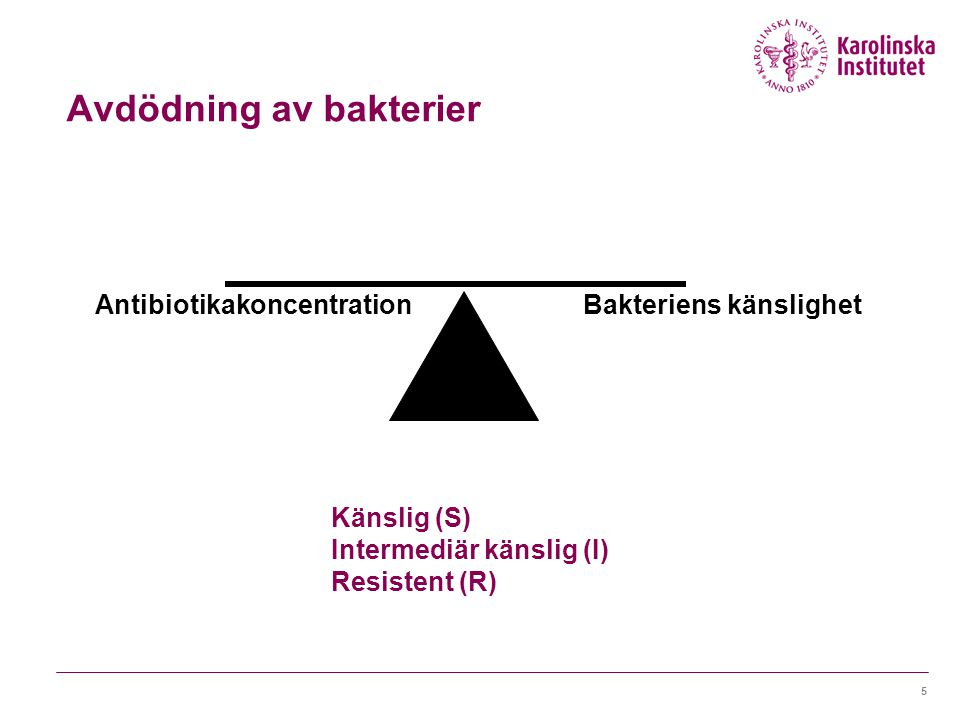 Bakteriens känslighet Antibiotikakoncentration Avdödning av bakterier Känslig (S) Intermediär känslig (I) Resistent (R) 5