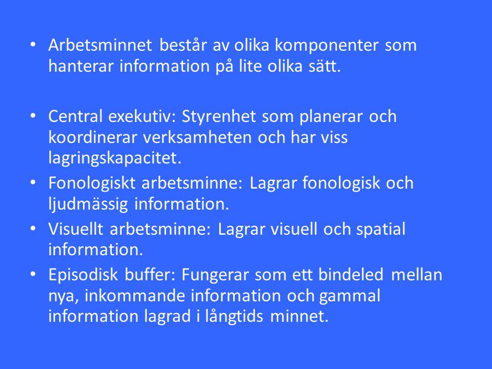 Arbetsminnet består av olika komponenter som hanterar information på lite olika sätt. Central exekutiv: Styrenhet som planerar och koordinerar verksam