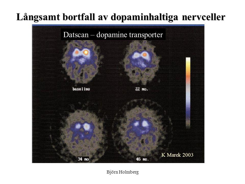 K Marek 2003 Långsamt bortfall av dopaminhaltiga nervceller Datscan – dopamine transporter Björn Holmberg