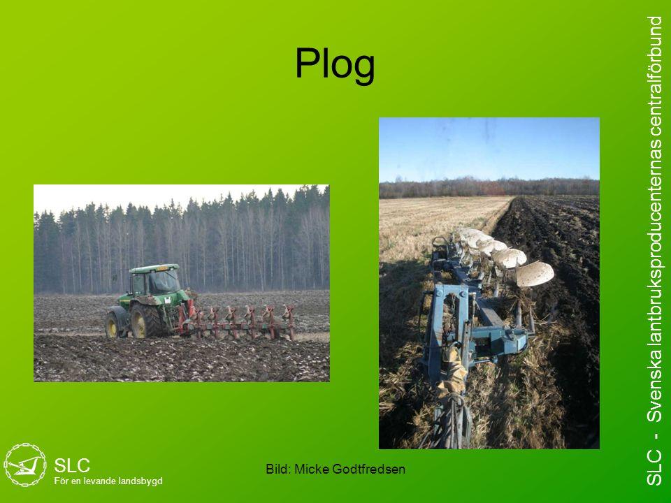 Plog Bild: Micke Godtfredsen SLC För en levande landsbygd SLC - Svenska lantbruksproducenternas centralförbund