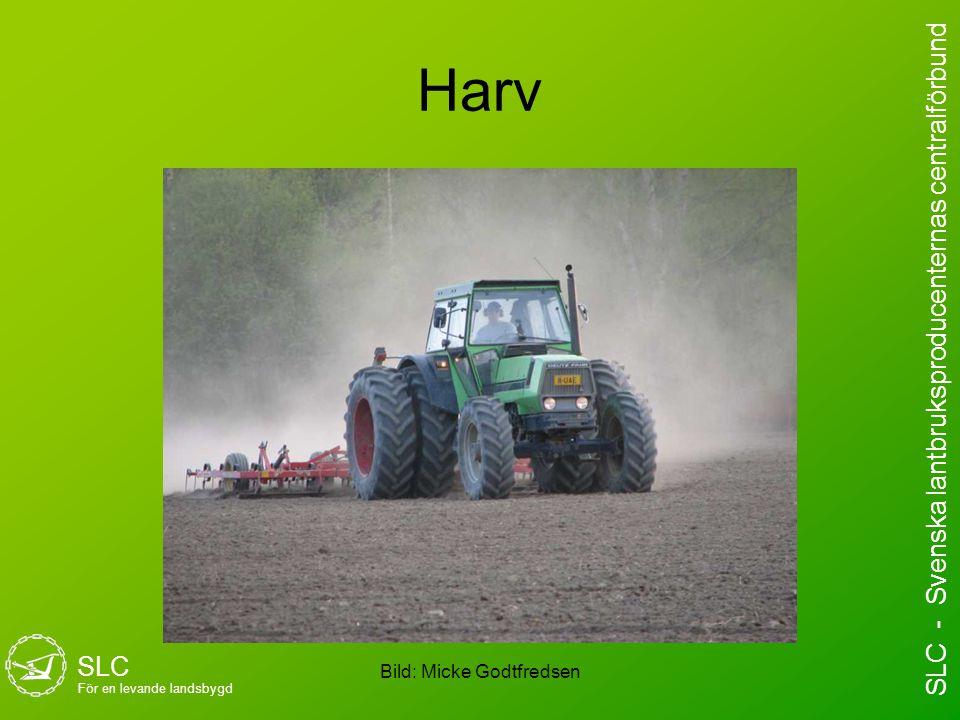 Harv Bild: Micke Godtfredsen SLC För en levande landsbygd SLC - Svenska lantbruksproducenternas centralförbund