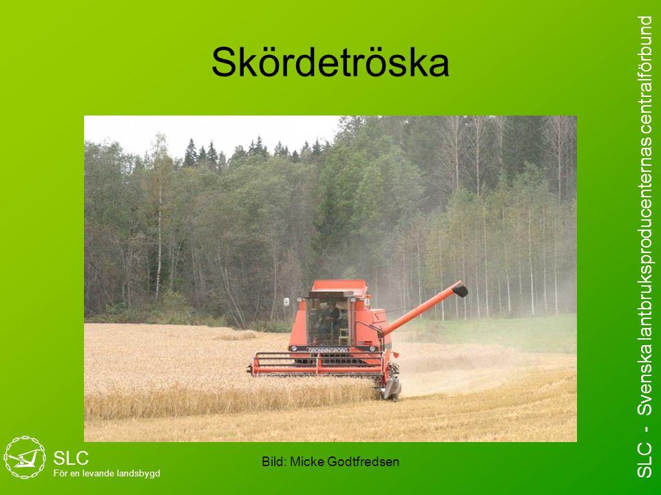 Skördetröska Bild: Micke Godtfredsen SLC För en levande landsbygd SLC - Svenska lantbruksproducenternas centralförbund