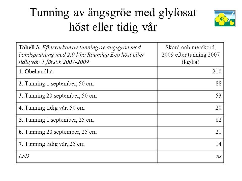 Tunning av ängsgröe med glyfosat höst eller tidig vår Tabell 3. Efterverkan av tunning av ängsgröe med bandsprutning med 2,0 l/ha Roundup Eco höst ell