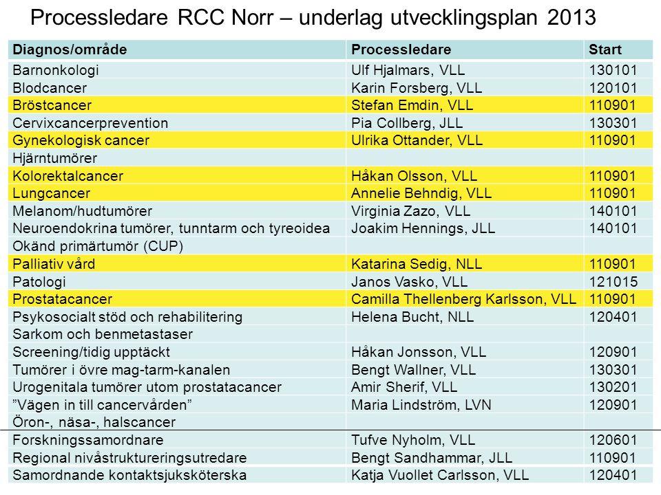 Processledare RCC Norr – underlag utvecklingsplan 2013 Diagnos/områdeProcessledareStart BarnonkologiUlf Hjalmars, VLL130101 BlodcancerKarin Forsberg,