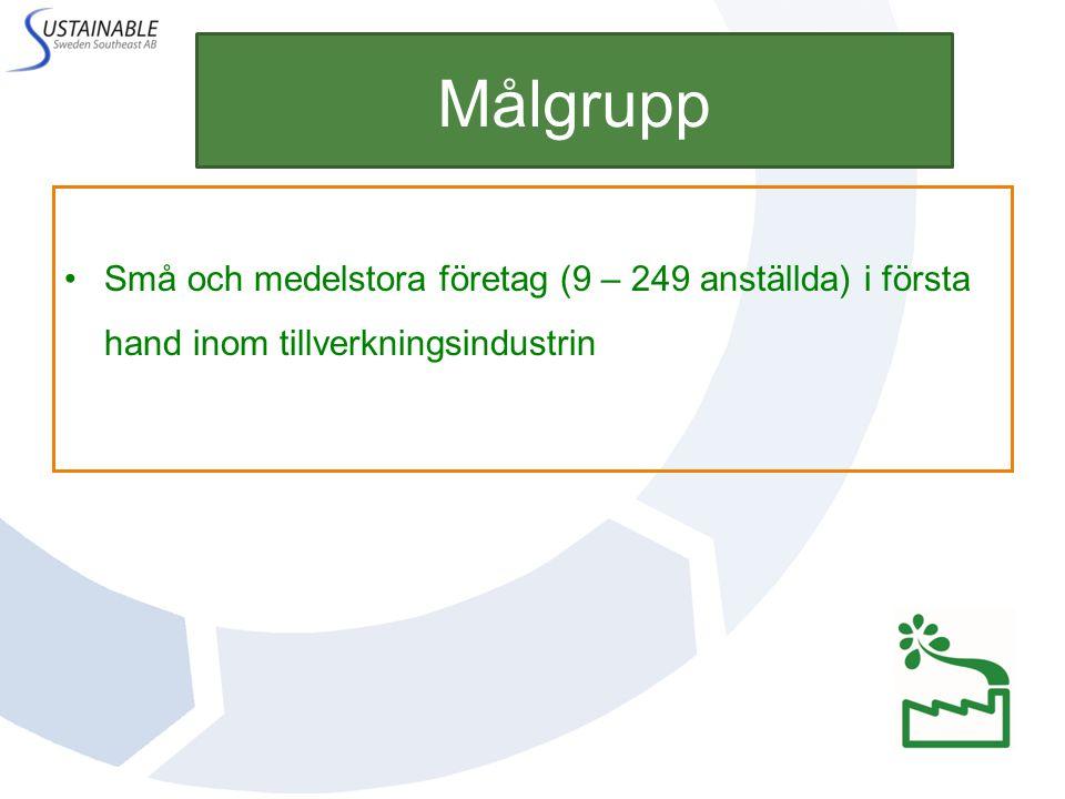 Målgrupp Små och medelstora företag (9 – 249 anställda) i första hand inom tillverkningsindustrin