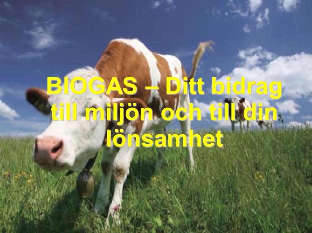 BIOGAS – miljöanpassad energi i lantbruket Användning av gasen