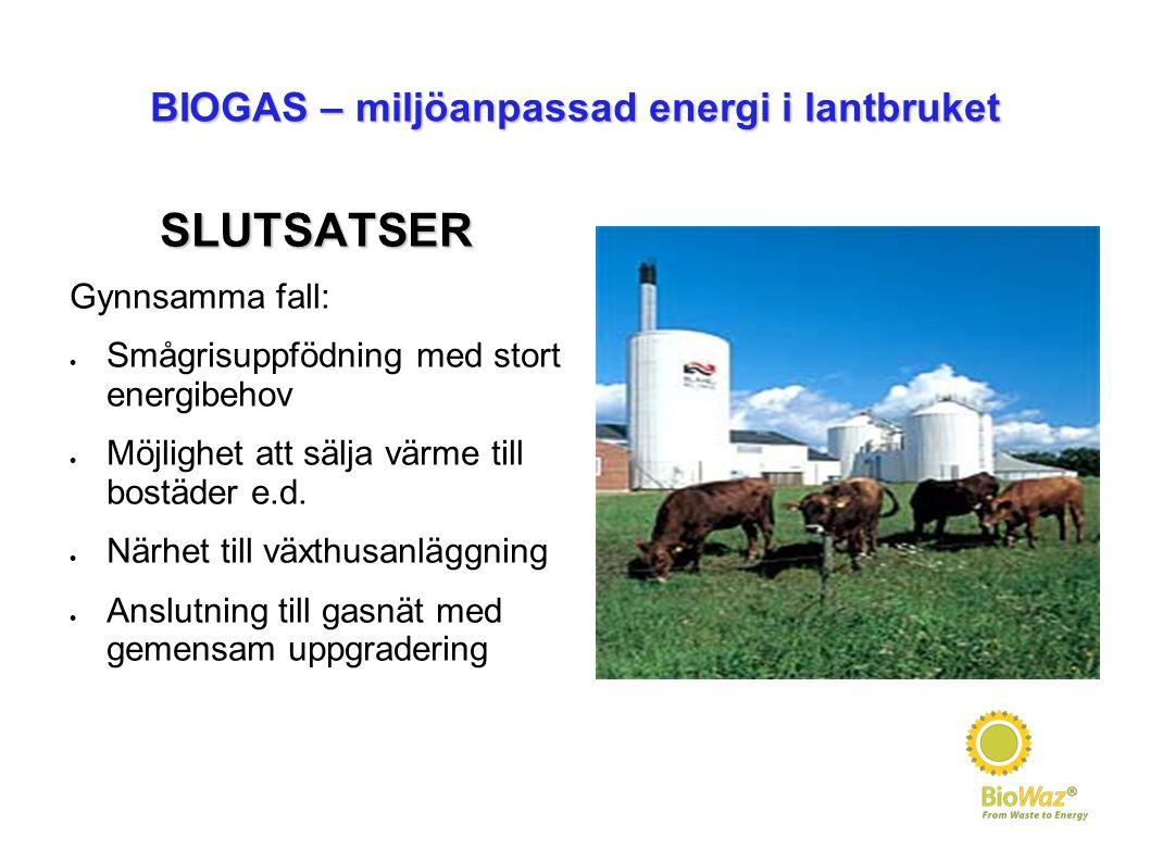 BIOGAS – miljöanpassad energi i lantbruket SLUTSATSER Gynnsamma fall:  Smågrisuppfödning med stort energibehov  Möjlighet att sälja värme till bostä