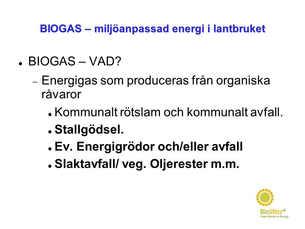 BIOGAS – miljöanpassad energi i lantbruket BIOGAS – VAD?  Energigas som produceras från organiska råvaror Kommunalt rötslam och kommunalt avfall. Sta
