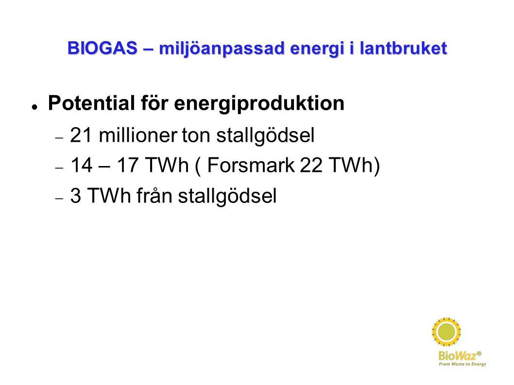 BIOGAS – miljöanpassad energi i lantbruket Potential för energiproduktion  21 millioner ton stallgödsel  14 – 17 TWh ( Forsmark 22 TWh)  3 TWh från