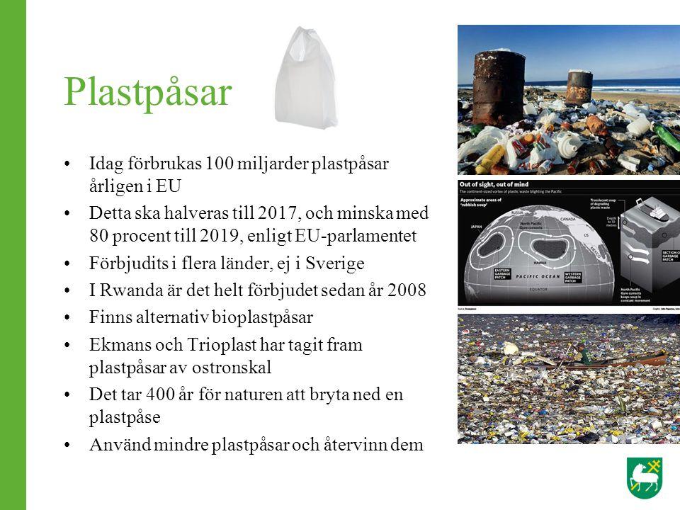 Idag förbrukas 100 miljarder plastpåsar årligen i EU Detta ska halveras till 2017, och minska med 80 procent till 2019, enligt EU-parlamentet Förbjudi