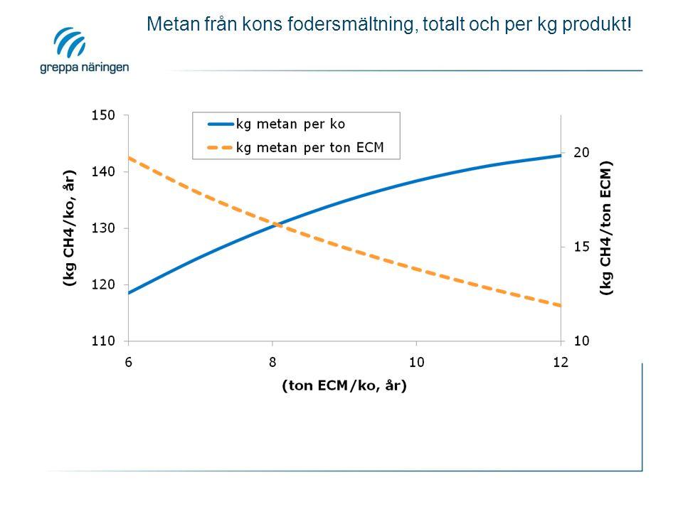 Metan från kons fodersmältning, totalt och per kg produkt!
