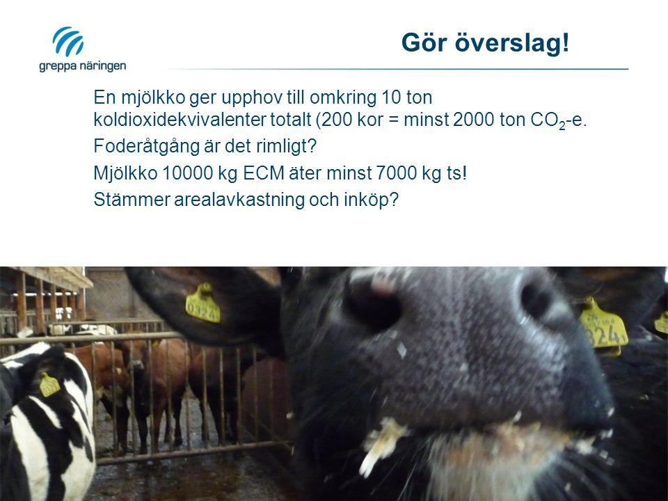 Gör överslag! En mjölkko ger upphov till omkring 10 ton koldioxidekvivalenter totalt (200 kor = minst 2000 ton CO 2 -e. Foderåtgång är det rimligt? Mj