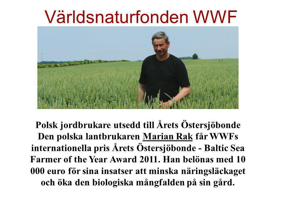Världsnaturfonden WWF Polsk jordbrukare utsedd till Årets Östersjöbonde Den polska lantbrukaren Marian Rak får WWFs internationella pris Årets Östersj