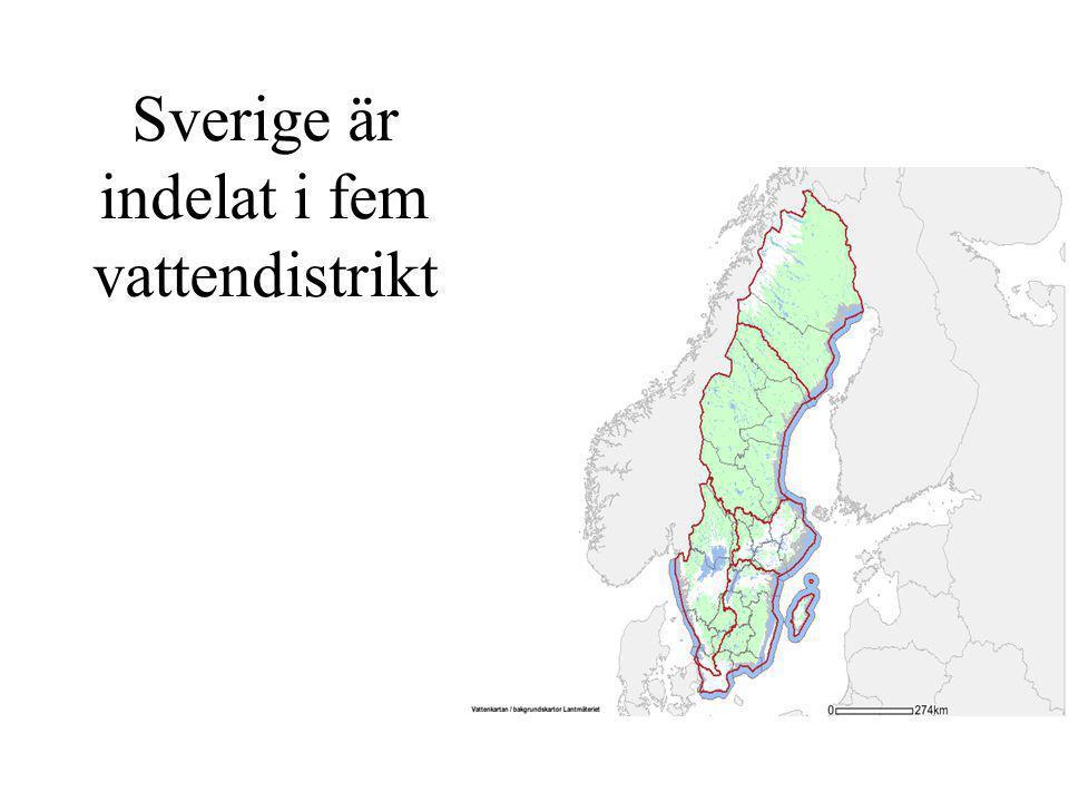 Sverige är indelat i fem vattendistrikt