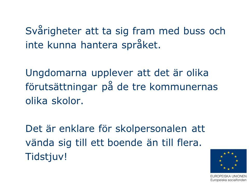 Svårigheter att ta sig fram med buss och inte kunna hantera språket. Ungdomarna upplever att det är olika förutsättningar på de tre kommunernas olika