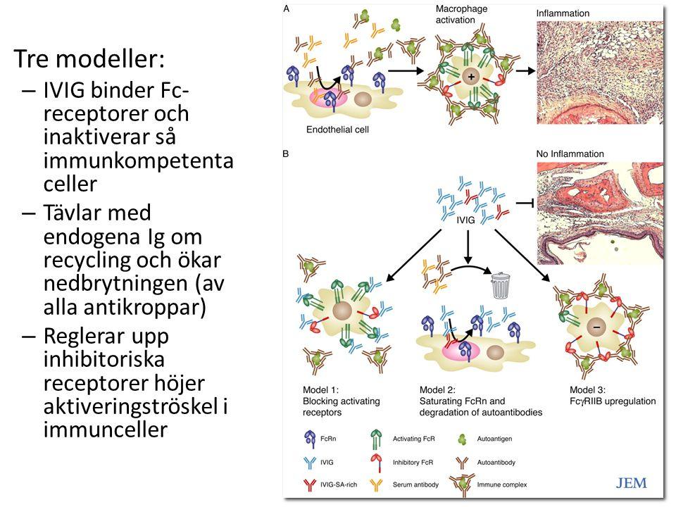 Tre modeller: – IVIG binder Fc- receptorer och inaktiverar så immunkompetenta celler – Tävlar med endogena Ig om recycling och ökar nedbrytningen (av