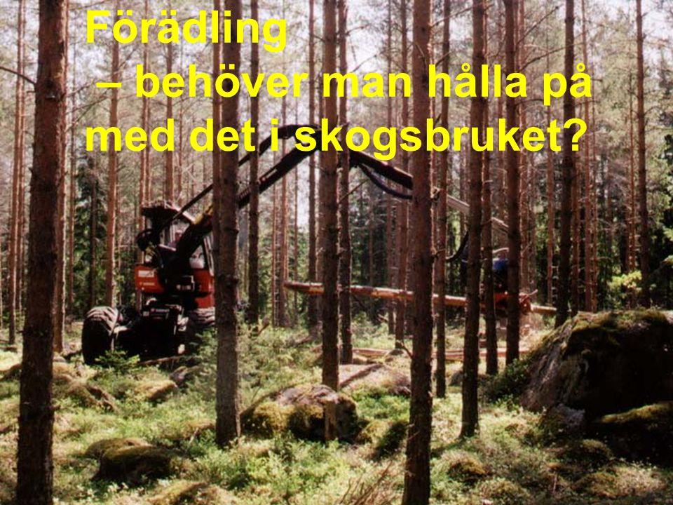 Förädling – behöver man hålla på med det i skogsbruket?